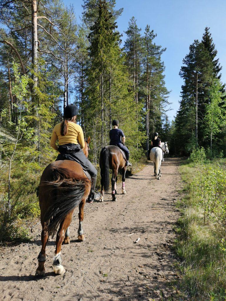 Ratsastusta metsässä